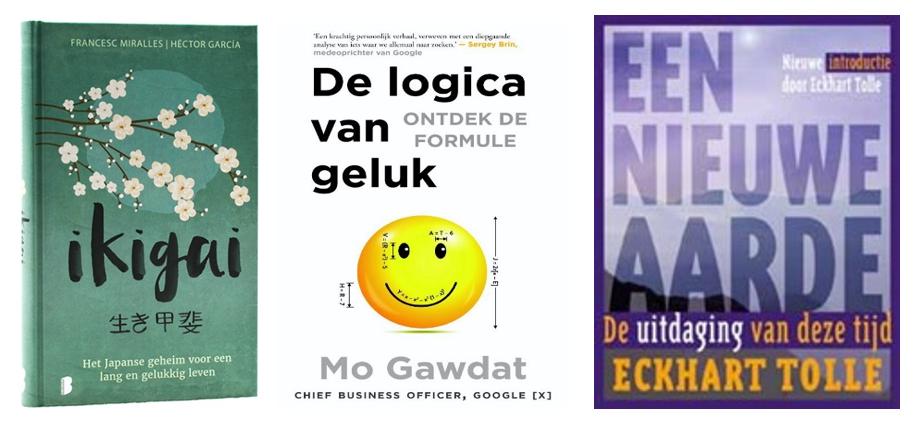 Afbeeldingsresultaat voor logica van geluk